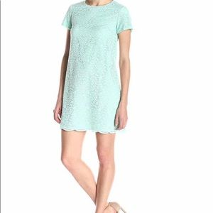 Women's Short Sleeve Shift Dress - brand new